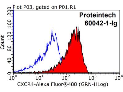 CXCR4 Monoclonal antibody - KD/KO Validated