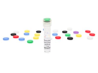 anti-human IL-10 mAb 12G8, biotinylated