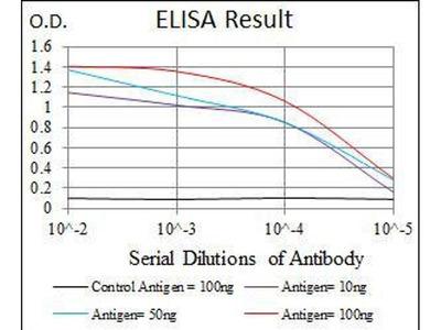 anti-THPO (thrombopoietin) antibody