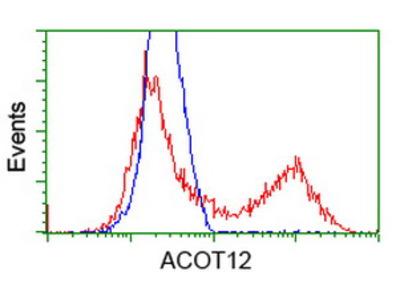 ACOT12 Monoclonal Antibody
