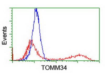 TOMM34 Monoclonal Antibody