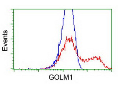 GOLM1 / GP73 / GOLPH2 Monoclonal Antibody