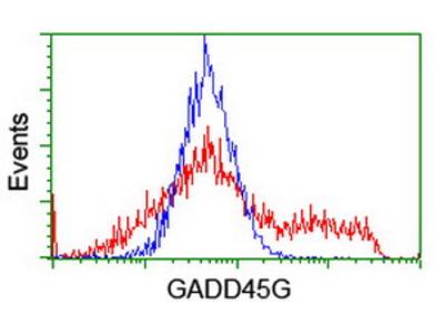 CR6 / GADD45G Monoclonal Antibody