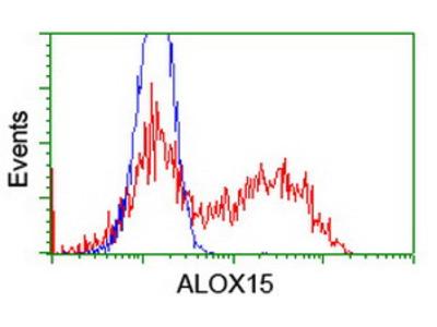 ALOX15 / 15-Lipoxygenase Monoclonal Antibody