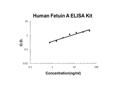 Human Fetuin A / AHSG PicoKine ELISA Kit