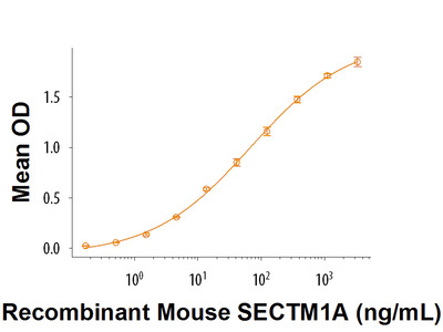 SECTM1A Fc Chimera Protein