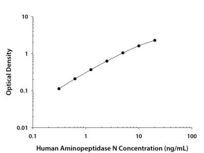 Human Aminopeptidase N / CD13 DuoSet ELISA