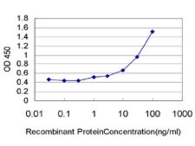 anti-XAB2 (CG6197) antibody