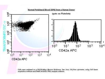 anti-GP9 (CD42a) antibody