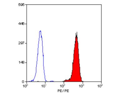 anti CD32 / FcRII-a