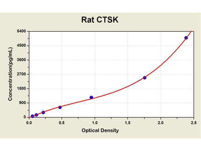 Cathepsin K ELISA Kit