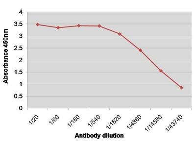 anti Coagulation factor VIII (F8)