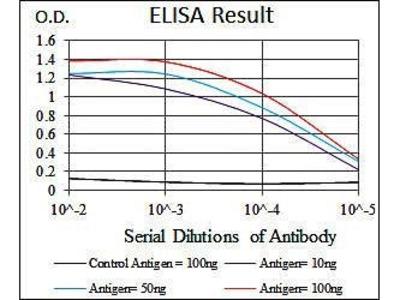 HSF4 antibody
