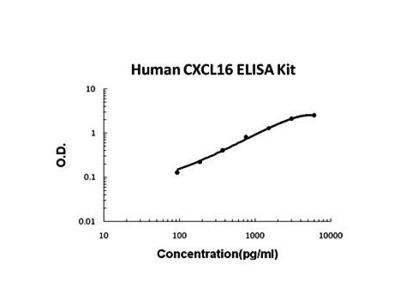 Human CXCL16 ELISA Kit