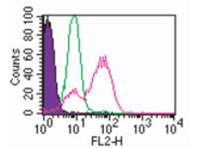 TLR3 Antibody