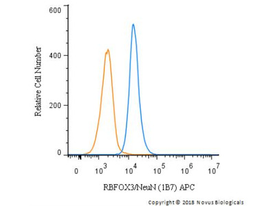 RBFOX3 / NeuN Antibody (1B7) [Allophycocyanin]