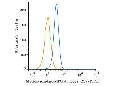 Myeloperoxidase / MPO Antibody (2C7) [PerCP]