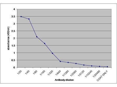 alpha 1-Microglobulin Antibody