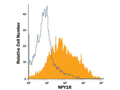 Human NPY1R APC-conjugated Antibody