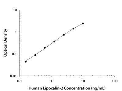 Human Lipocalin-2 / NGAL Quantikine ELISA Kit