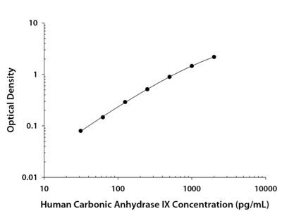 Carbonic Anhydrase IX/CA9 ELISA