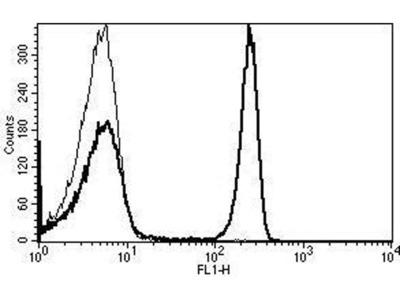 anti-CD4 antibody