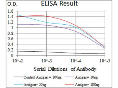 Fc Fragment of IgE, High Affinity I, Receptor (FCER1A) Antibody