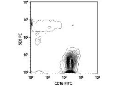 CCR3 Monoclonal Antibody