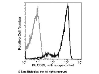 CD89 / FCAR Antibody (PE), Mouse MAb