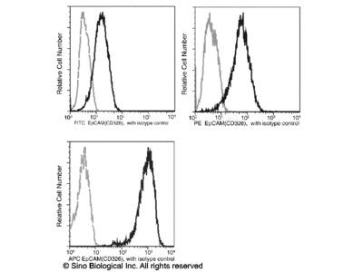 EpCAM / TROP-1 / TACSTD1 Antibody (PE), Mouse MAb