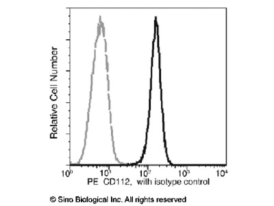 CD112 / Nectin-2 / PVRL2 Antibody (PE), Rabbit MAb