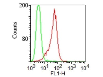 Mouse Monoclonal TLR2 Antibody