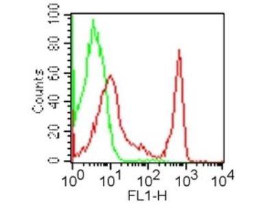 CD4 Antibody (GK1.5) [FITC]