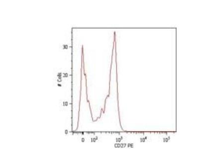 CD27 Monoclonal Antibody (LT27)