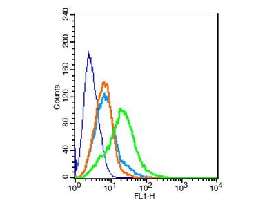 MC4 Receptor Antibody, Biotin Conjugated