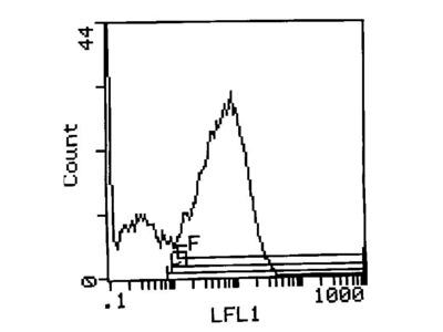 I-Ak Monoclonal Antibody (14V.18)