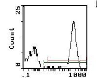 Platelet Antibody