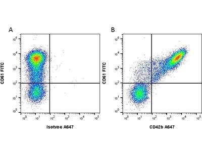 MOUSE ANTI HUMAN CD42b