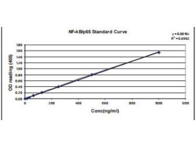 Human, Mouse, Rat RelA / NFkB p65 ELISA Kit (Colorimetric)