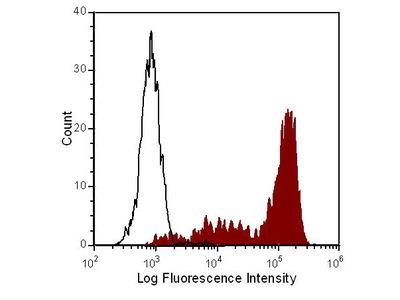 Ly-6G/Ly-6C Monoclonal Antibody (RB6-8C5), PE