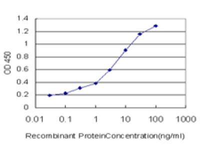 FACL2 / ACSL1 Monoclonal Antibody