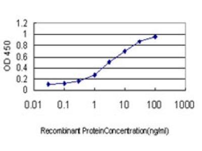 LLGL1 / HUGL Monoclonal Antibody