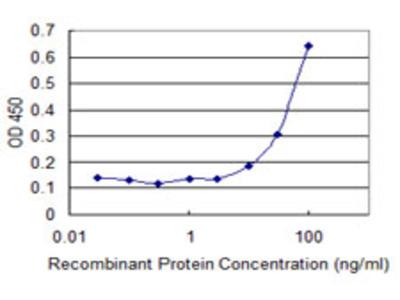 CRHBP Monoclonal Antibody