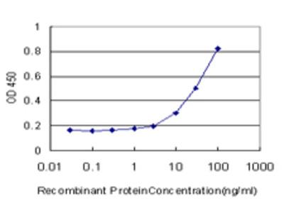 TTF2 / HuF2 Monoclonal Antibody