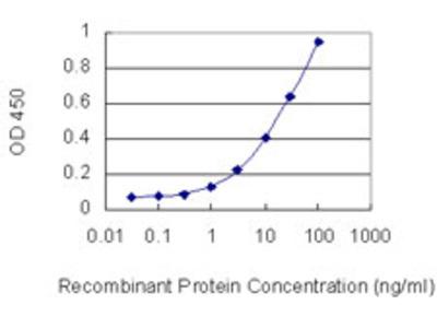 PTPRO Monoclonal Antibody