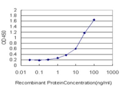 GPD2 Monoclonal Antibody