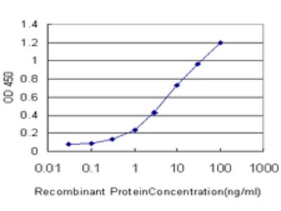 KLK6 / Kallikrein 6 Monoclonal Antibody