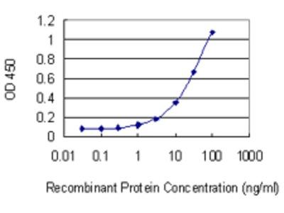 HBA1+2 / Hemoglobin Alpha Monoclonal Antibody