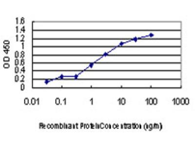 ULK1 Monoclonal Antibody