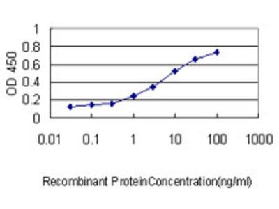 PPIA / Cyclophilin A Monoclonal Antibody